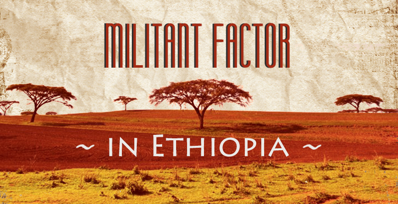 Civil War In Ethiopia: Overview Of Tigray Crisis