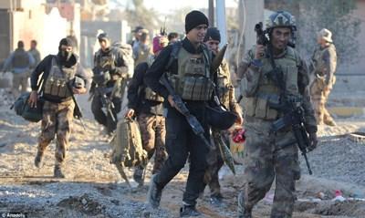 Iraqi army killed dozens ISIS terrorists in southern Fallujah