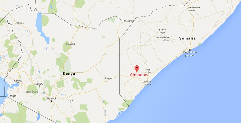 21 al-Shabab terrorists were killed by Kenyan army in Somalia