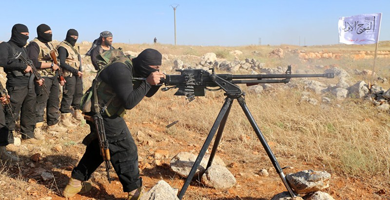 USA should arm rebels to maintain Syrian ceasefire: HNC