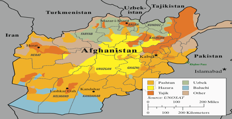 7 Taliban militants killed by Afghan forces in last 24 hours