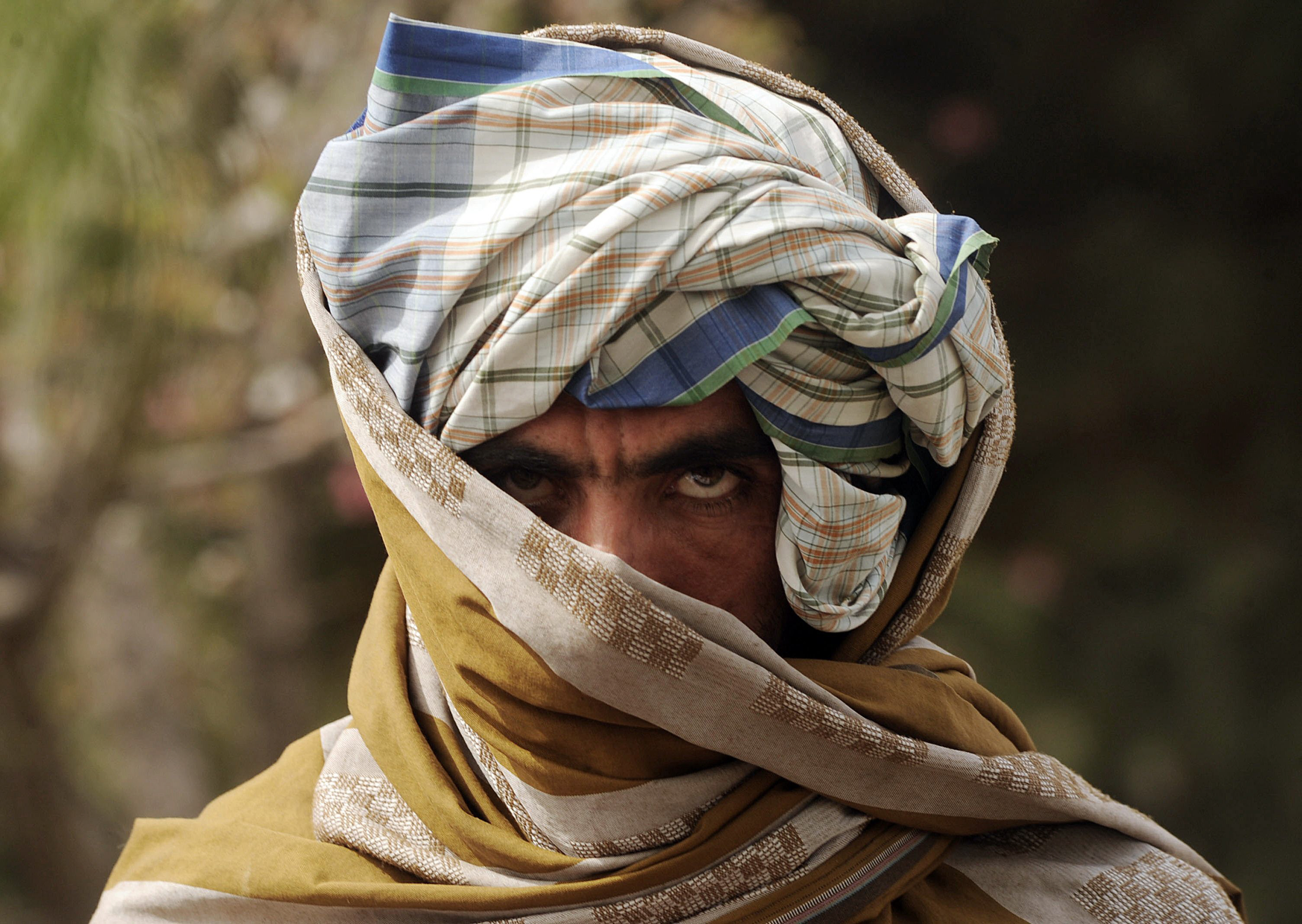 'Our people' in the Taliban