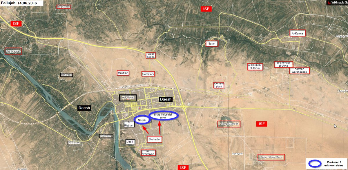"""Iraq's Army Secures First """"Relatively Safe"""" Exit Route for Civilians Fleeing Fallujah"""