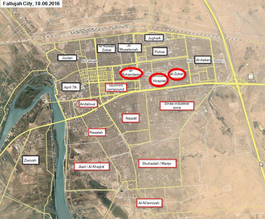 Iraqi Forces Liberate more Areas in Fallujah