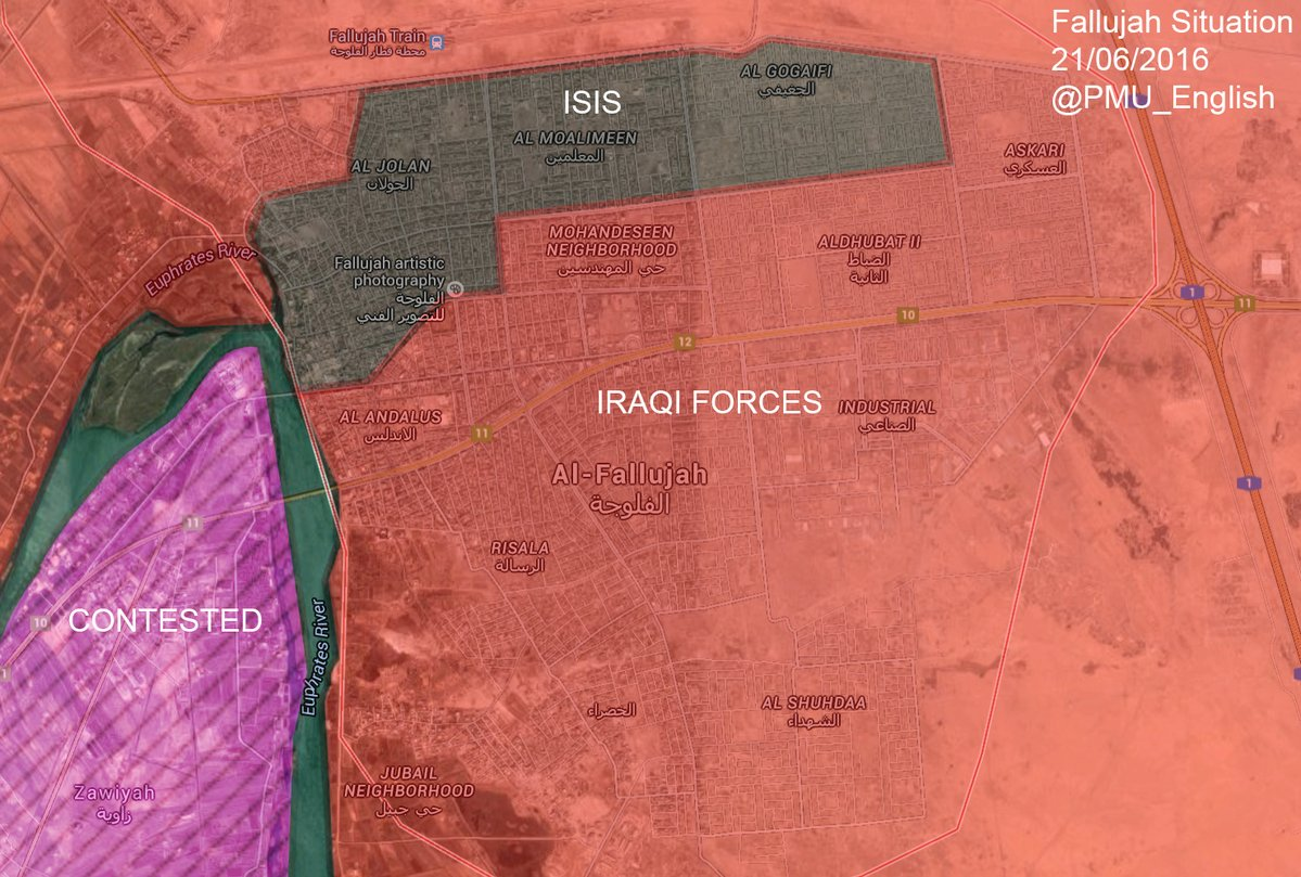 Military Situation in Fallujah, Iraq on June 21