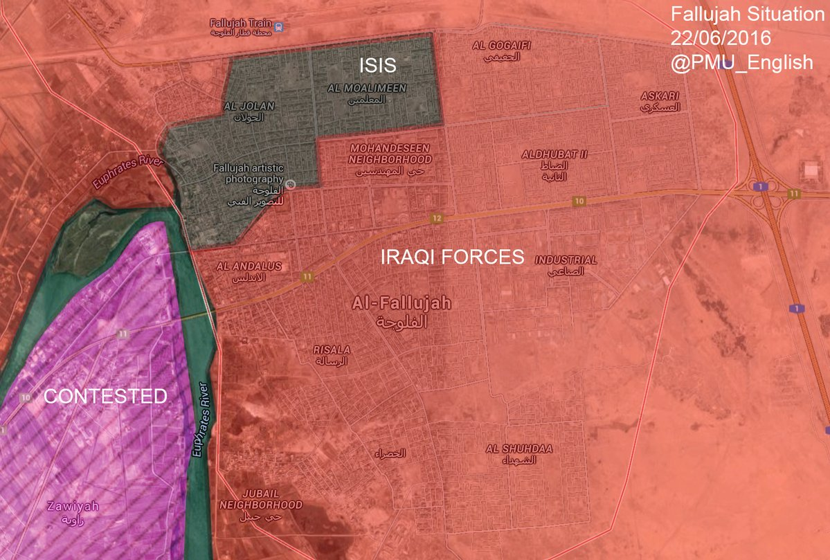 Iraqi Forces Liberate Al Gogaifi district of Fallujah
