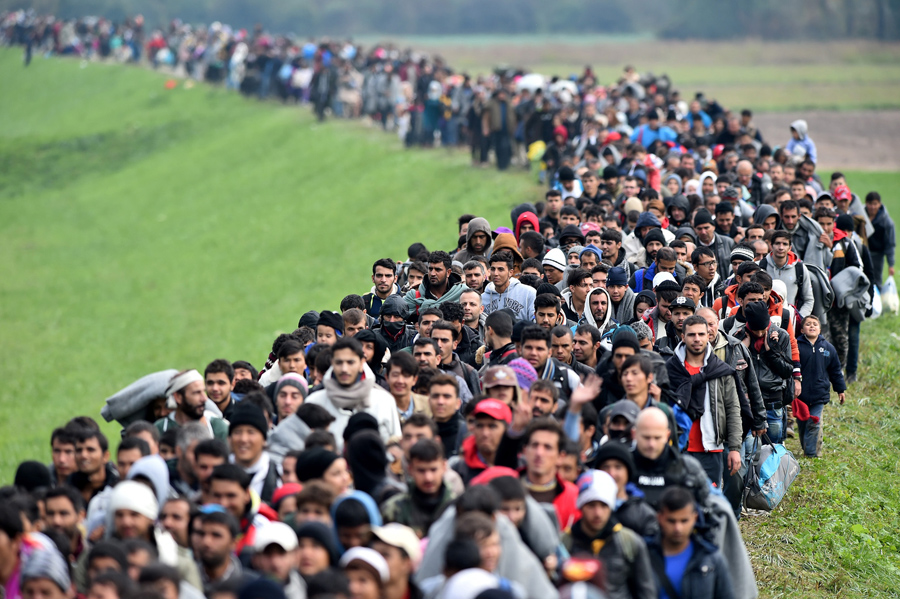 The New Challenge for the Balkans - the Intergration of the Migrants