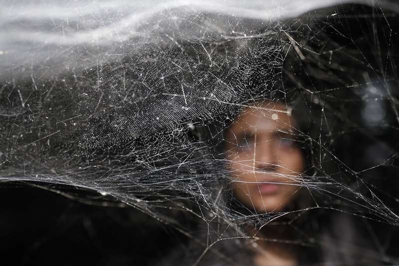 US Army to Test Armor of Spider Silk - Genetically Modified Silkworm Fiber
