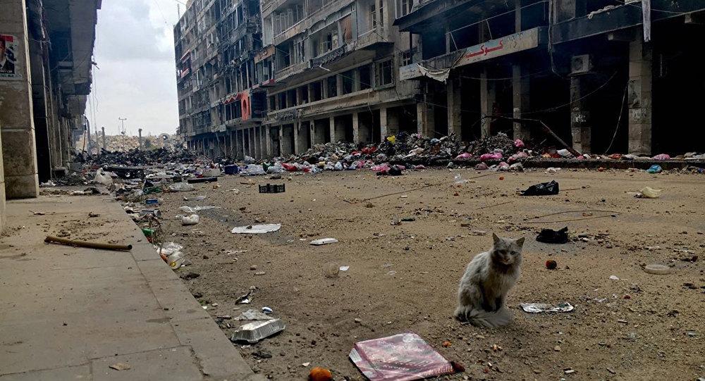 UN Calls for Humanitarian Caeasefire in Aleppo
