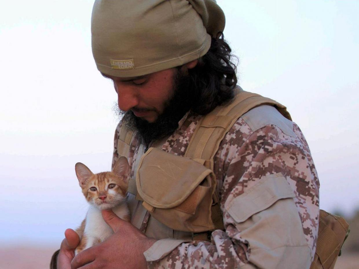 ISIS Starts to Use Kittens for Recruiting New Members