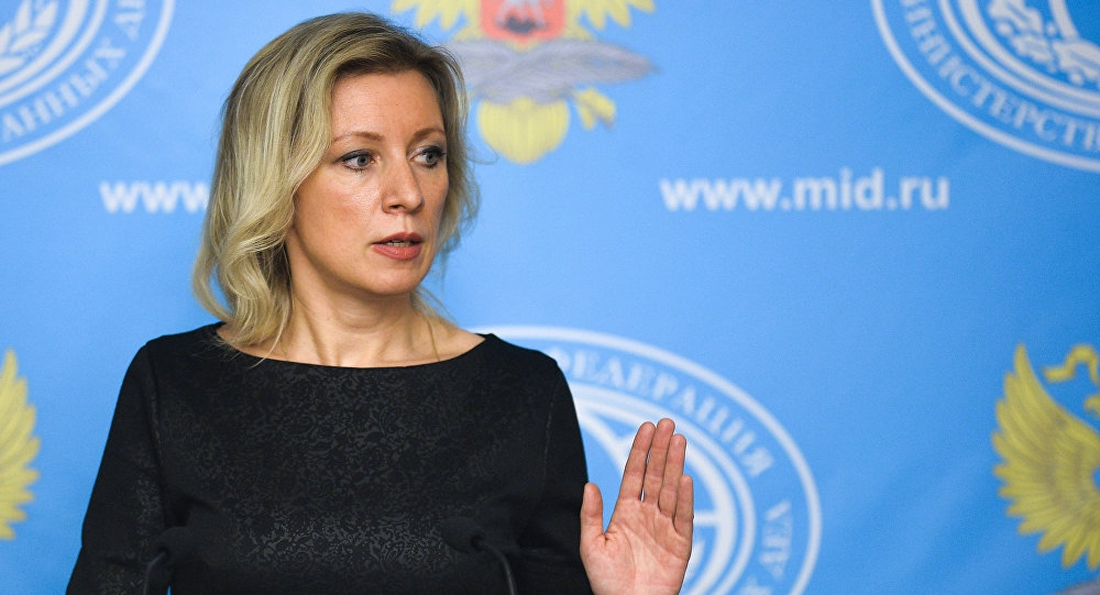 Russian Foreign Ministry Accuses US of Protection for Terrorists