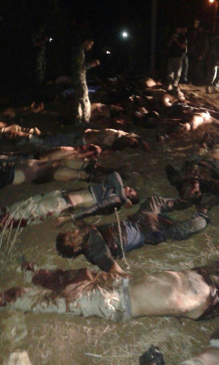 Dozens Al-Qaeda Members Dead in Failed Advance on Ibtaa Town in Syria's Daraa Province (Graphic Photos)