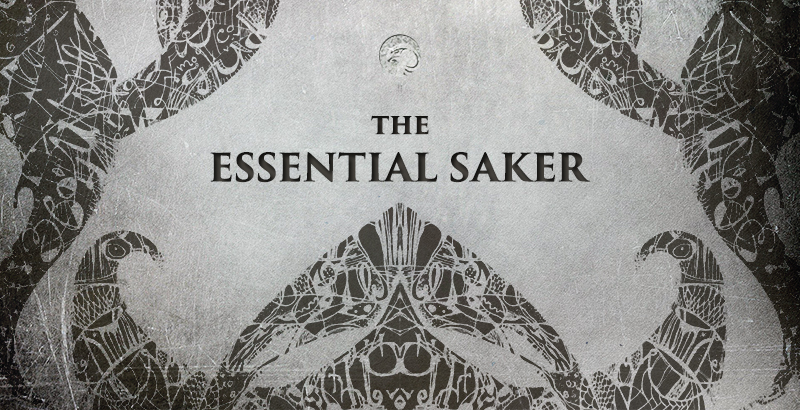 The Saker Blog Appeals for Support