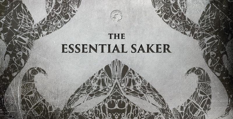 The Saker Blog Appeals for Support