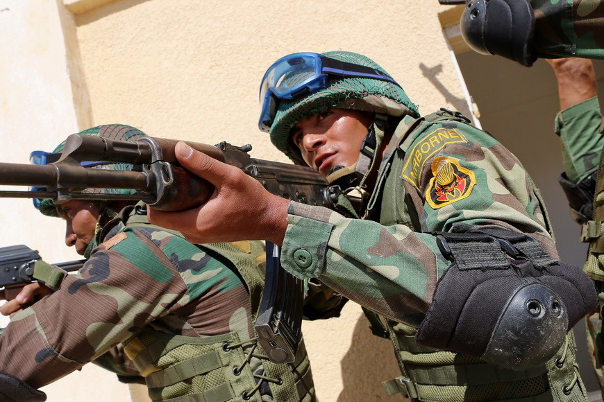 Egypt Drafts Generals and Pilots to Fight Alongside Syrian Army against Terrorists