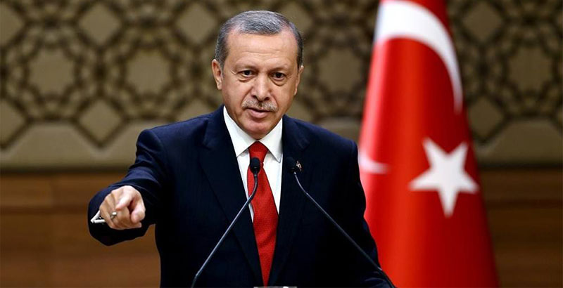 Turkey Entered Syria to End 'al-Assad's Regime' – Erdogan