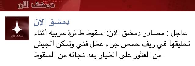 Syrian Air Force's Warplane Crashed Near Palmyra
