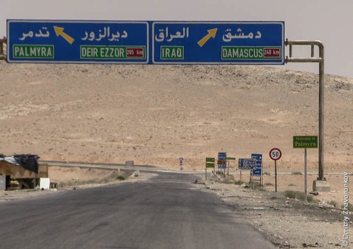 Syrian Military Deploys Elite Forces For Palmyra Offensive
