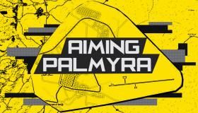 Aiming Palmyra (1)