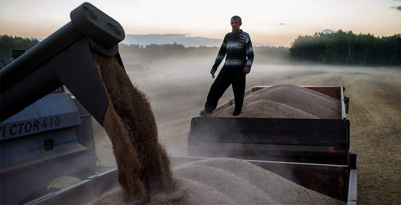 Turkey Imposes Duties on Grain Imports from Russia