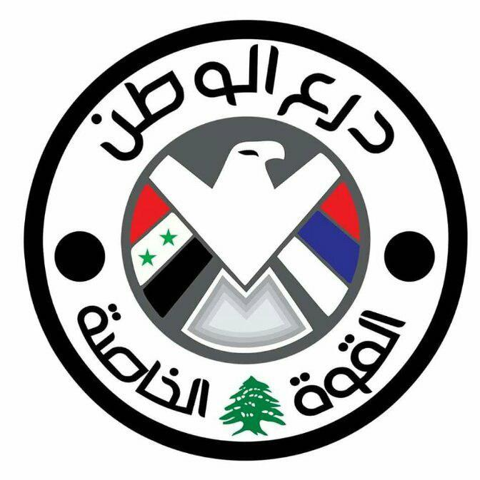 Joint Syrian-Lebanese Force Established To Defeat Terrorists At Syrian-Lebanese Border