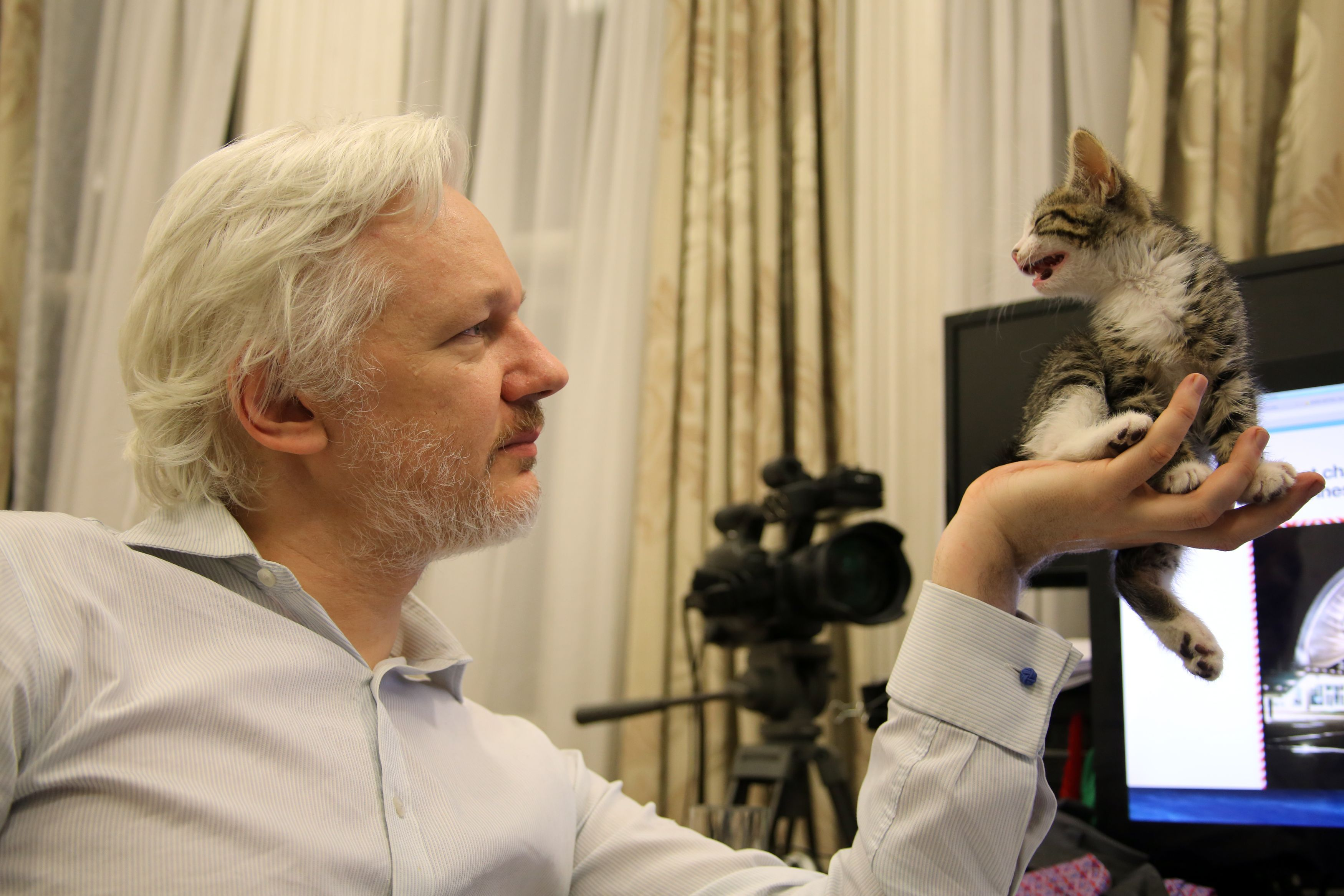 U.S. Preparing Charges To Arrest Julian Assange