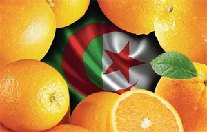 Algeria Experiencing A Few Crises In A Row
