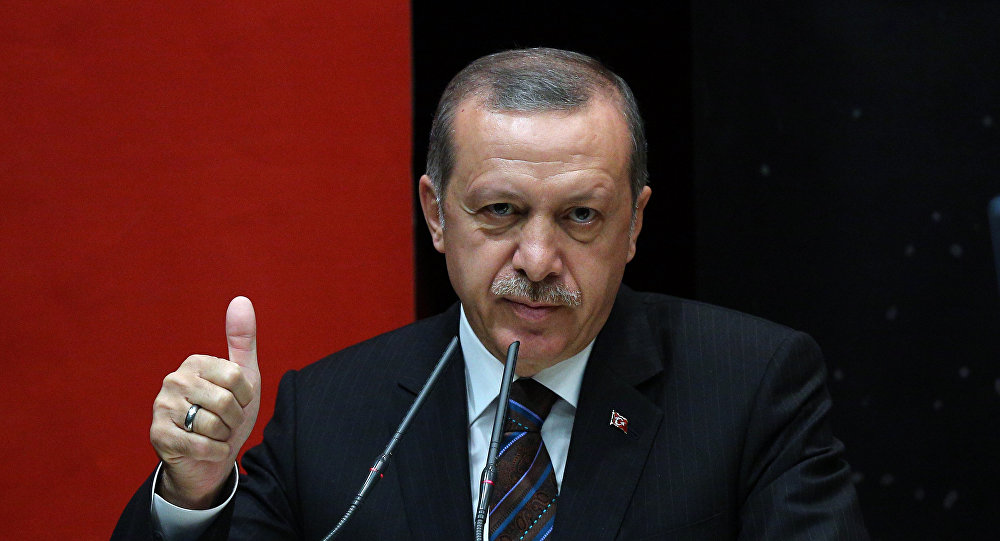 Erdogan: Turkey Is In Syria For Humanitarian Purposes