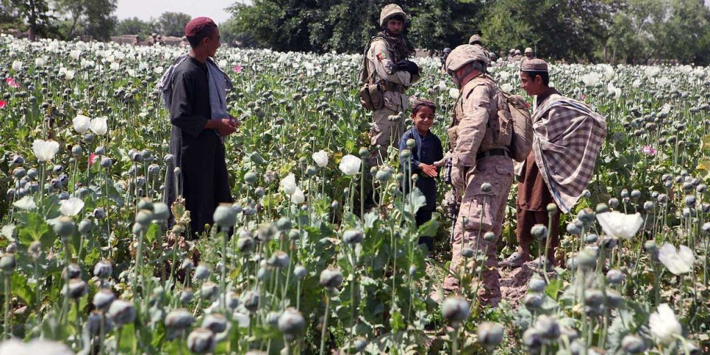 Russia Warns Of Sharp Deterioration Of Drug Situation In Afghanistan