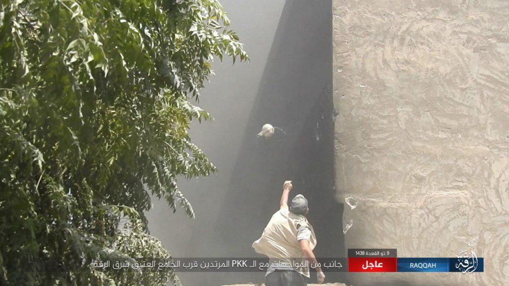 SDF Advances In Hasim Bin Abdul Malik, Repels ISIS Counter-Attack In Raqqah (Video, Photos)