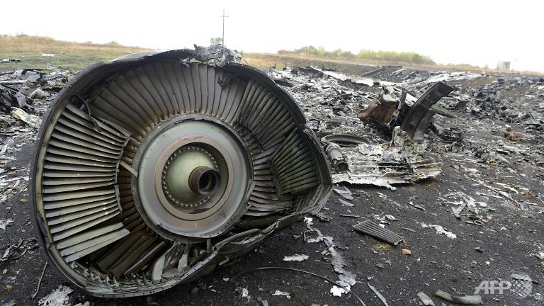 Malaysian Transport Minister: No Convincing Proof Of Russia's Role In MH17 Downing