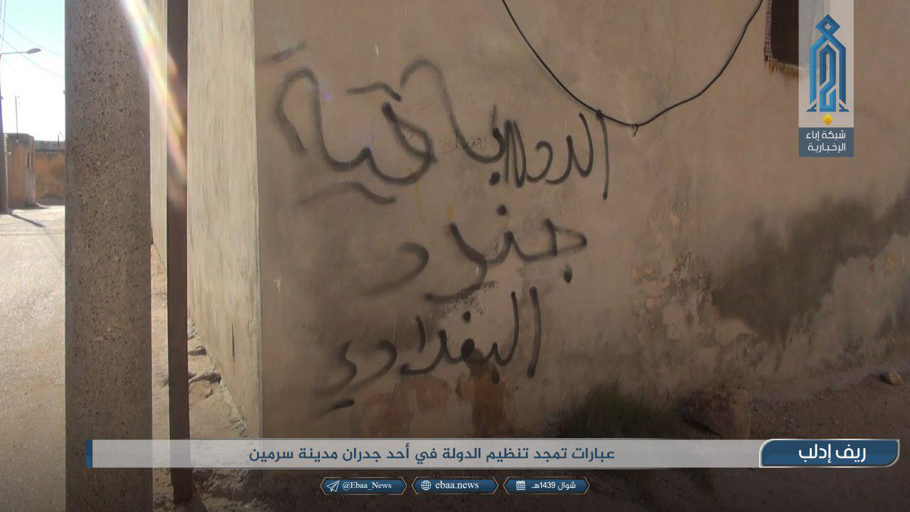 Hay'at Tahrir Al-Sham Claims It Eliminated ISIS Cells In Southeastern Idlib (Photos)