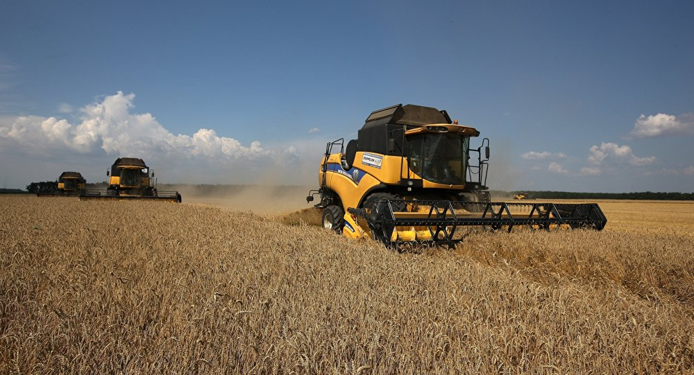 Turkey To Use National Currency For Wheat Imports From Russia