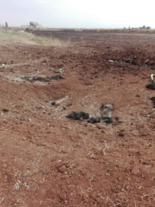 Syrian Army Killed Over 70 Militants While Recapturing Al-Hamameyat In Northern Hama (Photos)