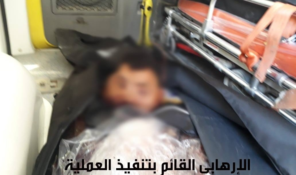 Egyptian Army Foils ISIS Suicide Attack In Northern Sinai