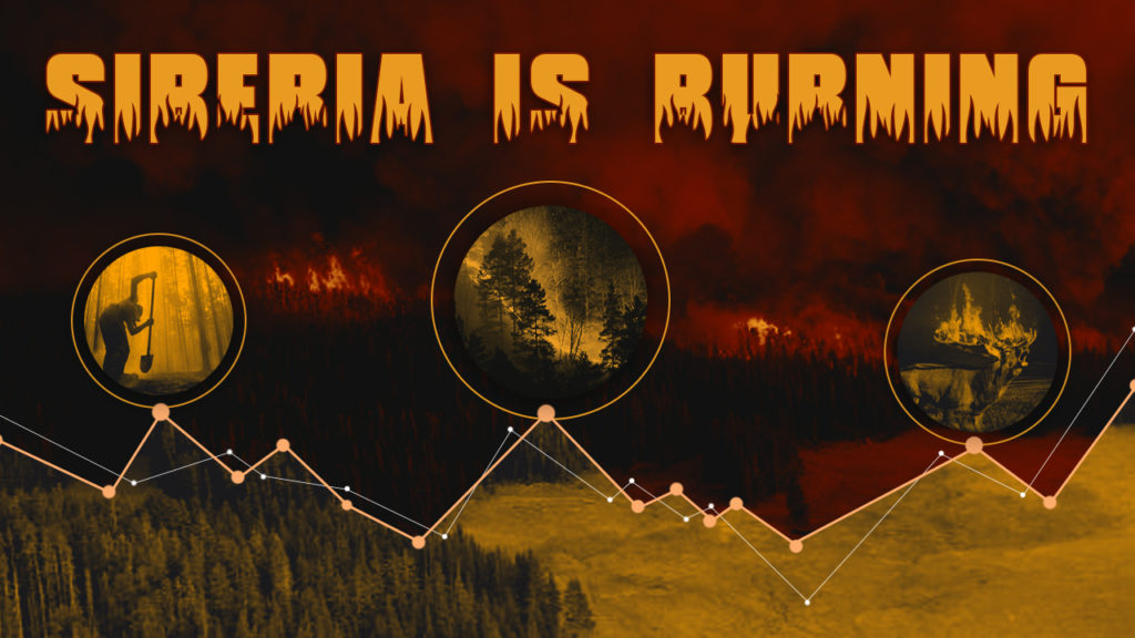 Siberian Forests Are Burning