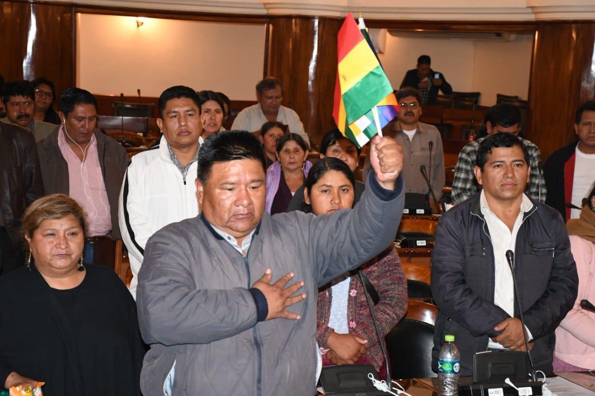 Bolivian Parliament Elects New Head, Refuses to Acknowledge Self-Proclaimed President Jeanine Anez