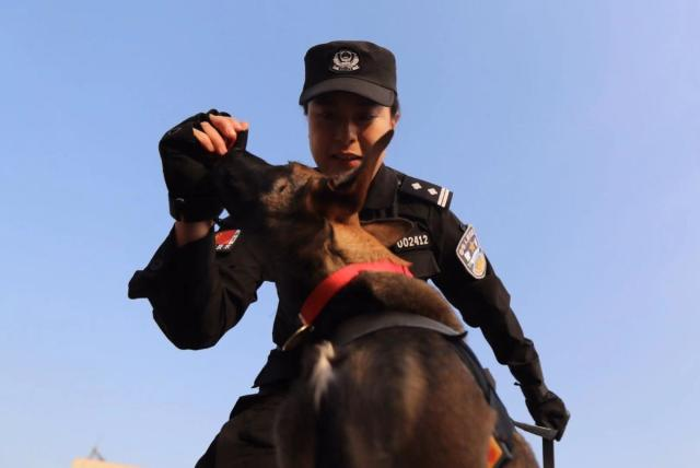 Beijing Police Accepts Six Cloned Dogs Into Service (Photos)