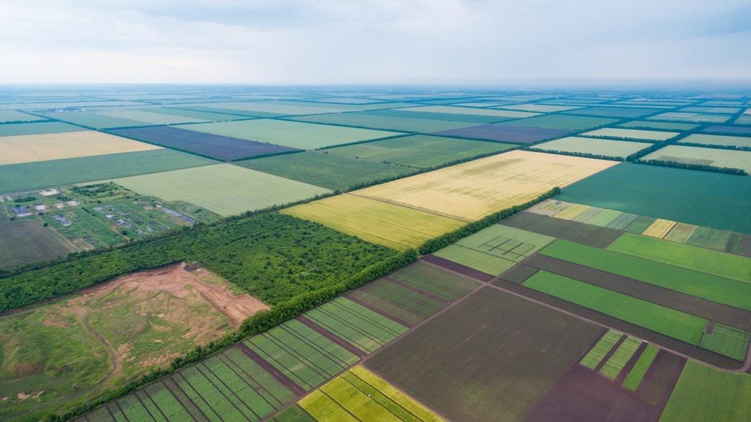 Zelensky's Land Reform: Another Step Towards Disintegration Of Ukraine