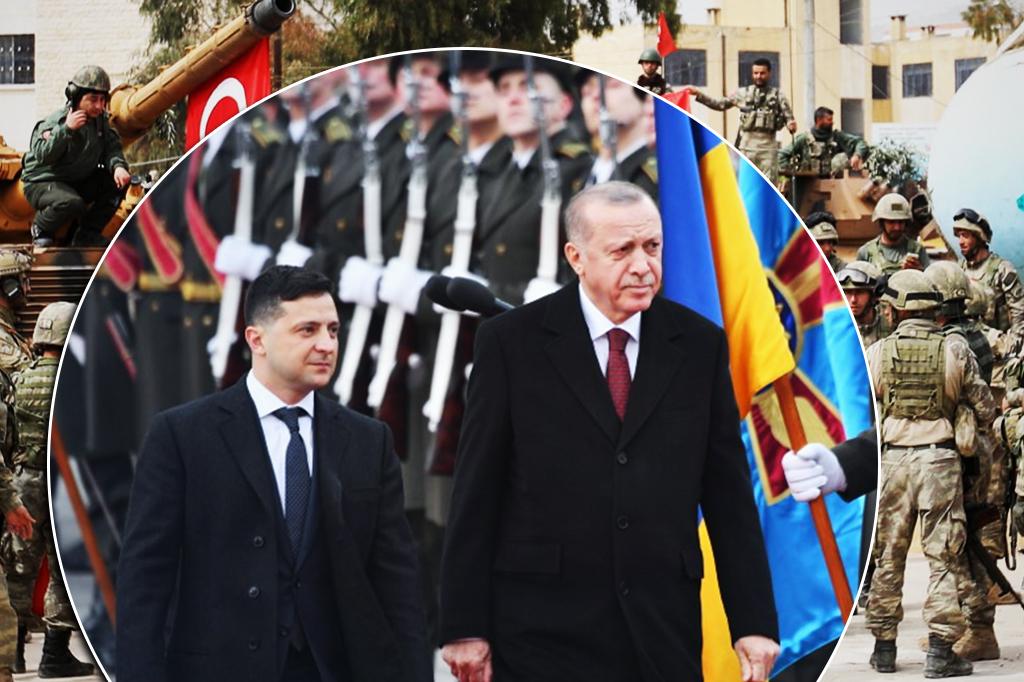 Ukraine-Turkey Cooperation and Offensive Preparations