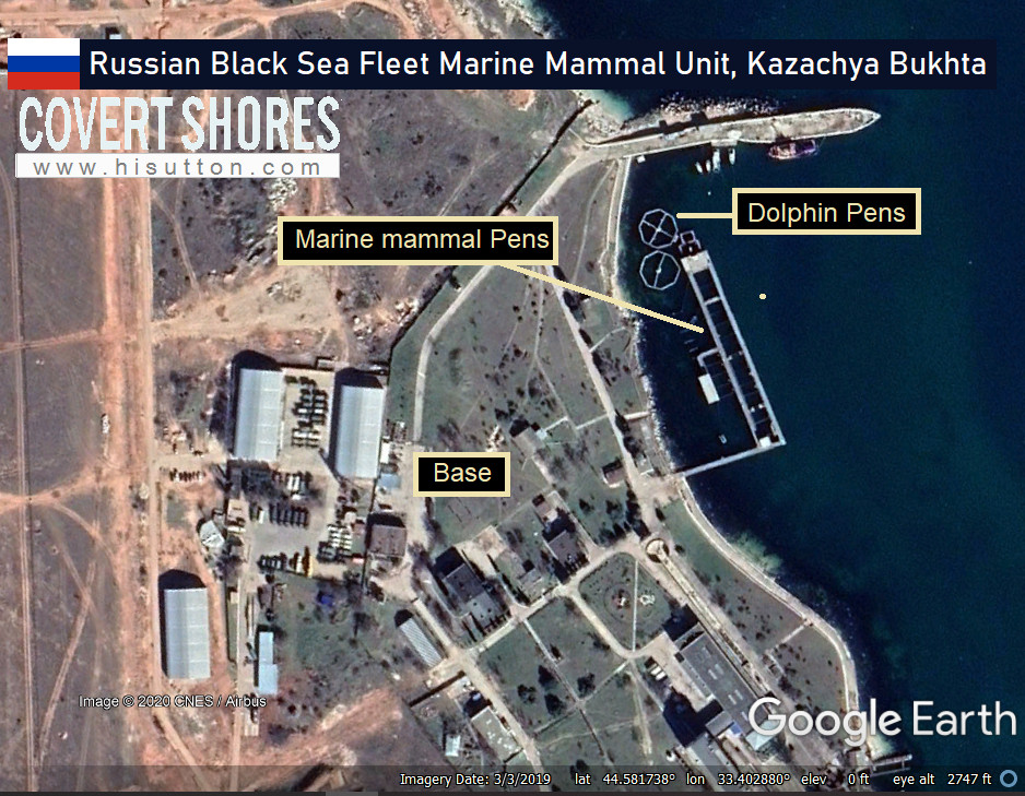 Russia Deployed Its Navy Seals And Dolphins To Defend Tartus Port, Syria: Covert Shores Report