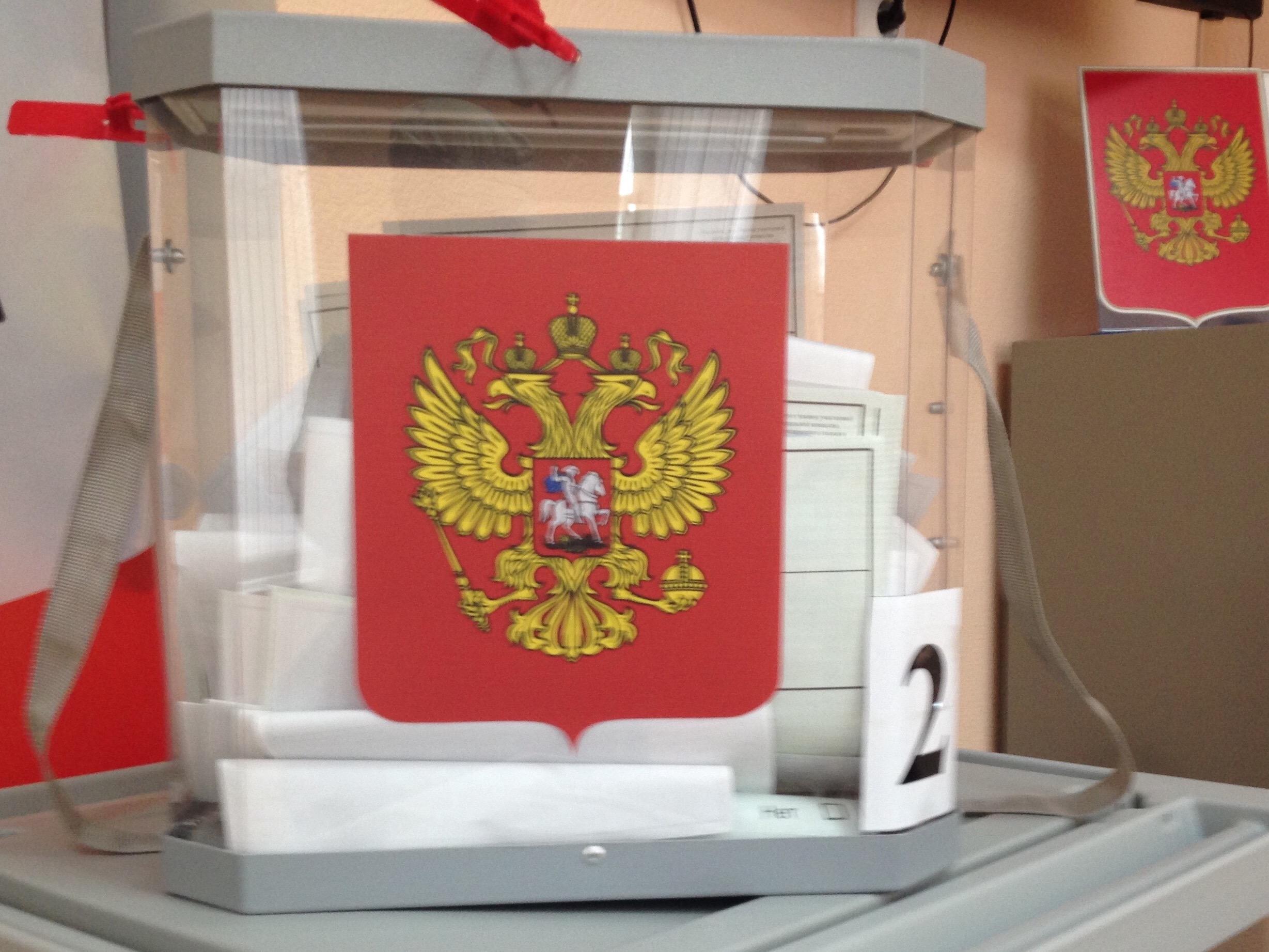 Russians Vote On Constitutional Amendments Referendum