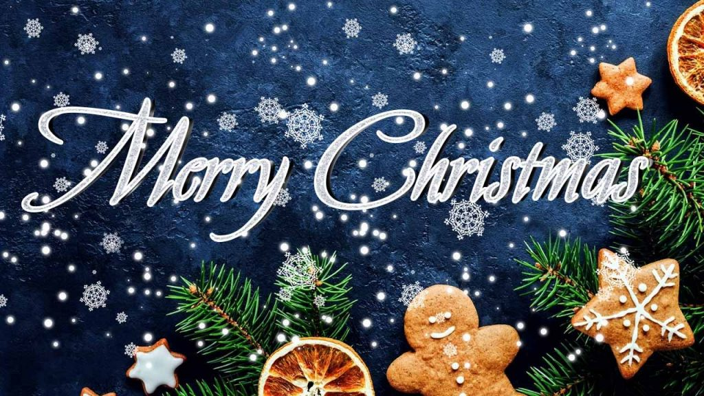 SouthFront Team Wishes You a Very Merry Christmas!