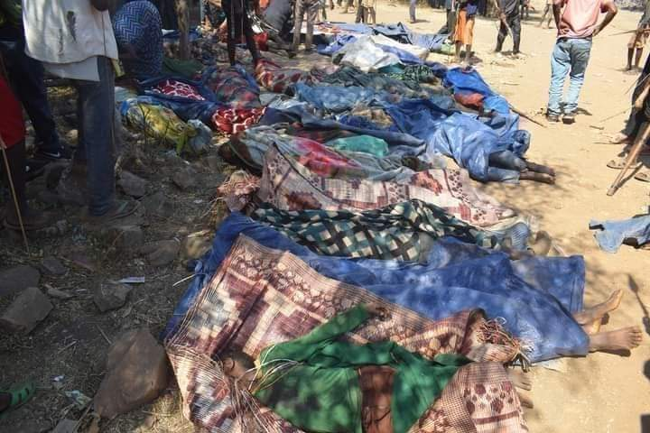 At Least 102 Killed After Prime Minister's Visit In Latest Ethiopian Ethnic Massacre