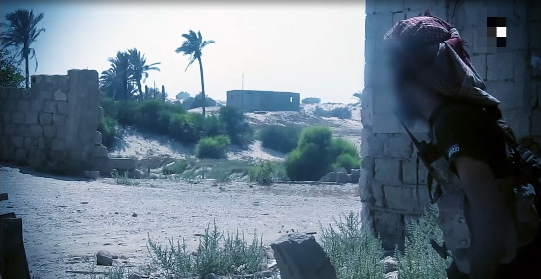 'Bleeding The Campaigns': New ISIS Release Exposes Fragile Situation In Egypt's Sinai