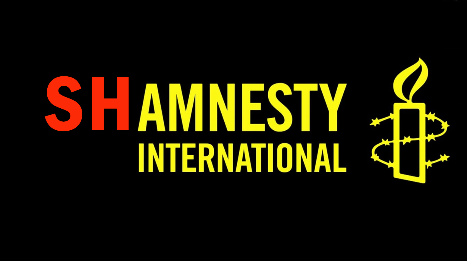 The Real Face Of Amnesty International