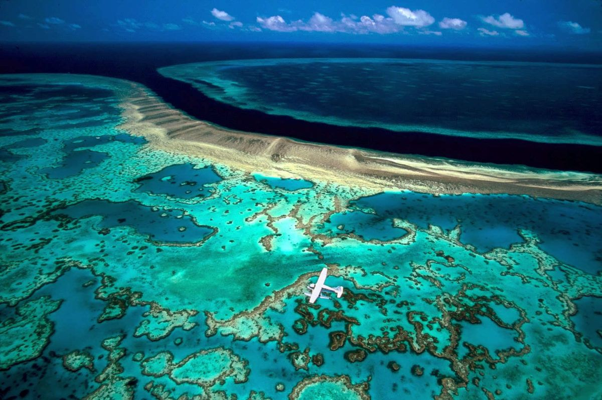 The Great Barrier Reef Wars