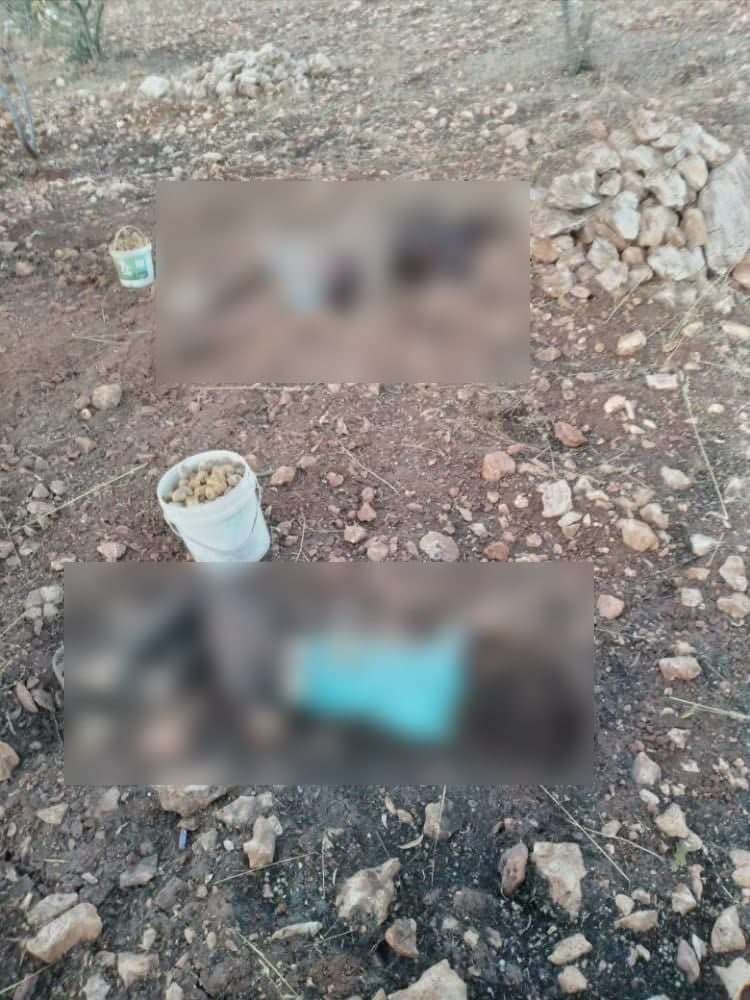 Man And Child Killed In Landmine Explosion In Greater Idlib