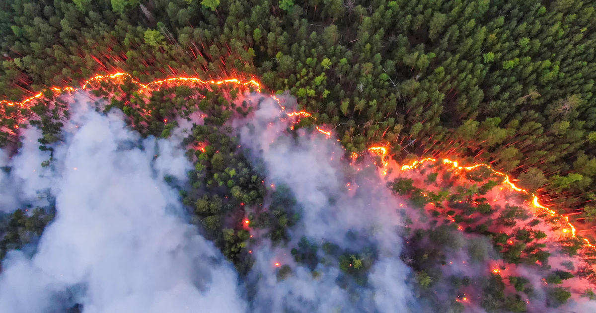 Siberian Wildfires Bigger Than Sum Of Global Fires, Reached Geographic North Pole