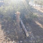 Turkish Combat Drone Bombed SDF-Held Villages In Northern Syria (Photos)